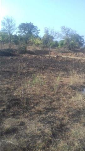 Agricultural Land in Belgaum | Agricultural Land for Sale in Belgaum