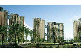 3500-4000 Sq ft Apartments Noida | 3500-4000 Sq ft Flats